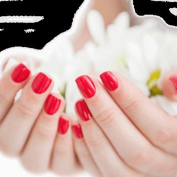Schöne Fingernägel durch Handpflege by Anke Mennecke